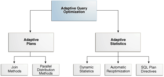 Adaptive Query Optimization01